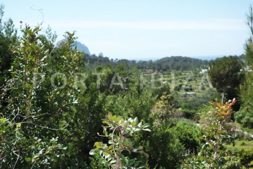garden-Cala-Vadella-villa