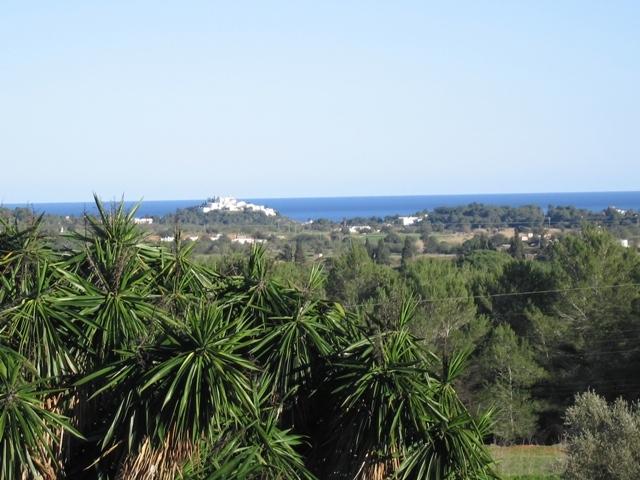 Blick-auf-das-Meer-Finca-San-Juan
