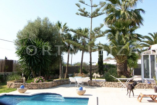 pool terrace-nice house-Ibiza