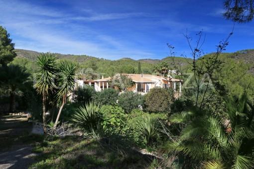 Schöne großzügige Villa auf einem Hügel gelegen, umgeben vom Morna-Tal