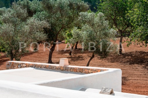 landscape-magnificent finca-santa eularia