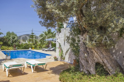pool-spacious villa-sa carroca-ibiza