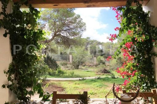 garden-charming property-fabulous location-Cala Conta