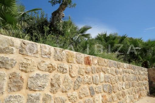 garden & plants-beautiful new construction villa at Can Pepsimo