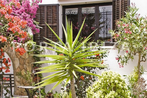 nice garden-house for renovation-close to the beach-Es Figueral