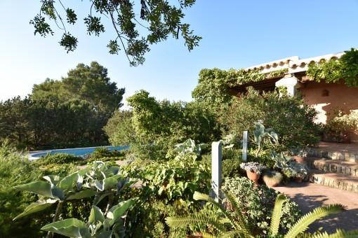 Wunderbares Landhaus mit Meerblick bei San Augstín