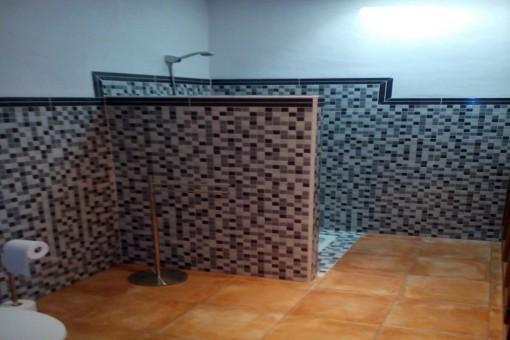 hauptbadezimmer mit Dusche