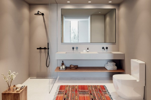 View of the modern bathroom